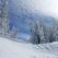 Cel mai frumos elogiu inchinat iernii: 14 melodii superbe despre zapada