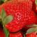 Capsunile, inimioarele naturii: Ai cel putin 10 motive ca sa le iubesti si sa le consumi!