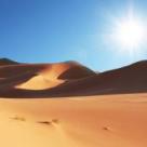 Testul Desertului, un test uimitor de psihologie relationala si de masurare a iubirii
