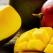 Beneficiile consumului de mango