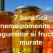 Muraturile, atat de bune pentru sanatate! 7 beneficii nemaipomenite ale legumelor si fructelor murate