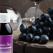 Cel mai puternic antioxidant de pe piata, creat de o romanca