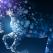 Horoscopul chinezesc 2014 pe fiecare luna in parte