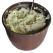 Crema de legume cu branza topita