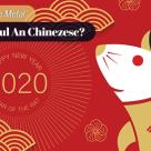 Testul Sobolanului de Metal: Ce iti aduce Noul An Chinezesc?