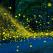Sunt magice, desprinse parcă din altă lume: 19 imagini divine cu licurici brăzdând întunericul nopții