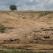România are nevoie urgent de o Barieră Verde și de păduri