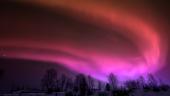 Minuni pe cerul Laponiei (Finlanda)