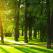 (P) Vara aceasta traieste fiecare zi ca pe o vacanta, la Edenland Park!