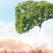 10 Tratamente naturiste pentru CURATAREA FICATULUI