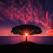 Testul Baum: Deseneaza un copac si afla cine esti cu adevarat