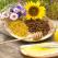 Calendarul produselor apicole: Ce e benefic pentru organismul tau in functie de sezon!