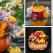 Decoratiuni de toamna: 21 de Aranjamente Florale in Dovleac absolut superbe!