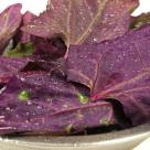 Loboda - alimentul detoxifiant si antioxidant al primaverii