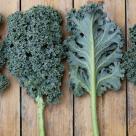 10 legume care sunt mai sanatoase decat varza Kale