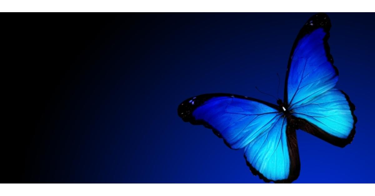 opțiuni control fluture)