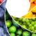 CURCUBEUL Sanatatii: Culoarea alimentelor si bolile pe care le poti trata