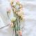 7 personaje din literatură cu nume de flori