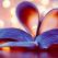 14 adevaruri despre dragostea adevarata
