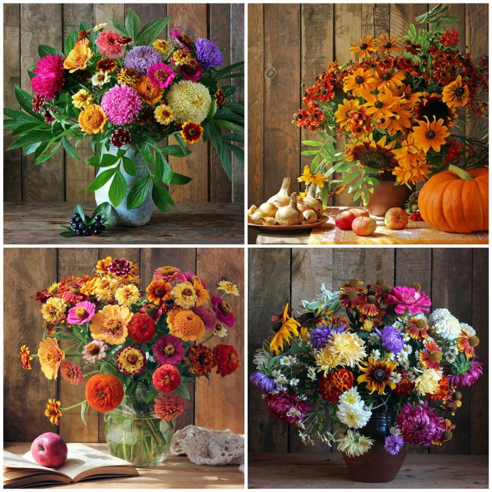 Minuni florale