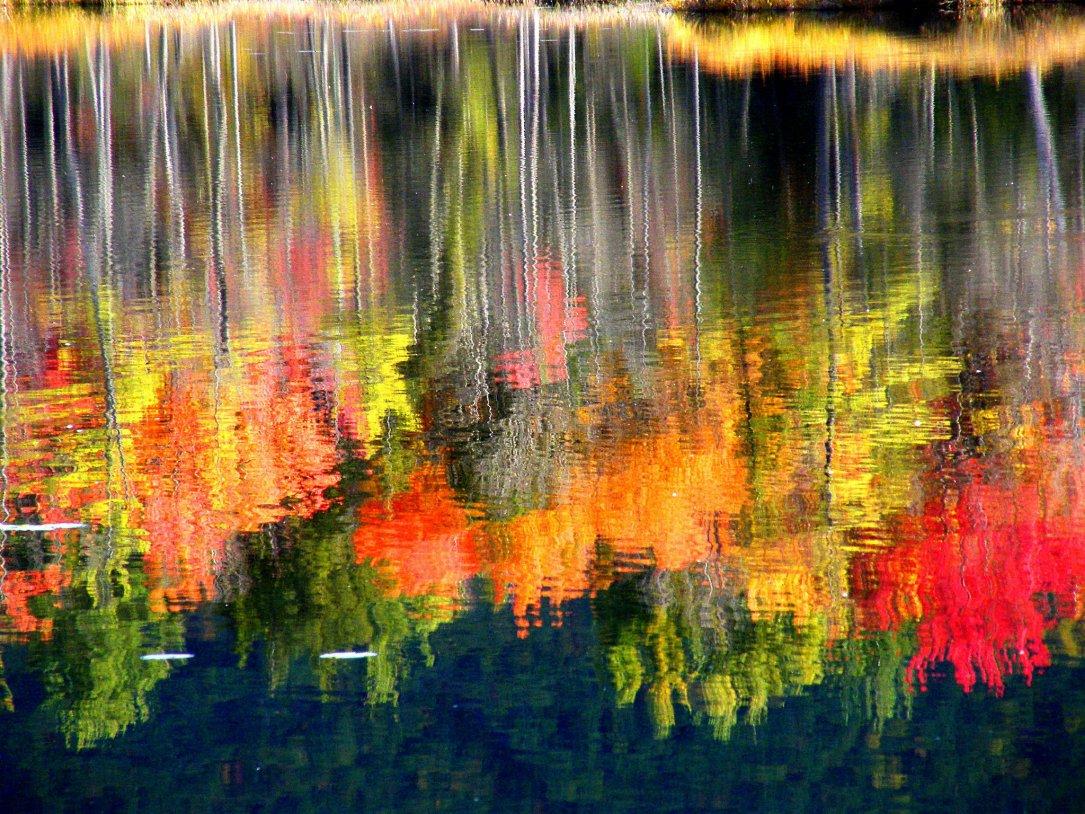 Culorile toamnei reflectate in apa