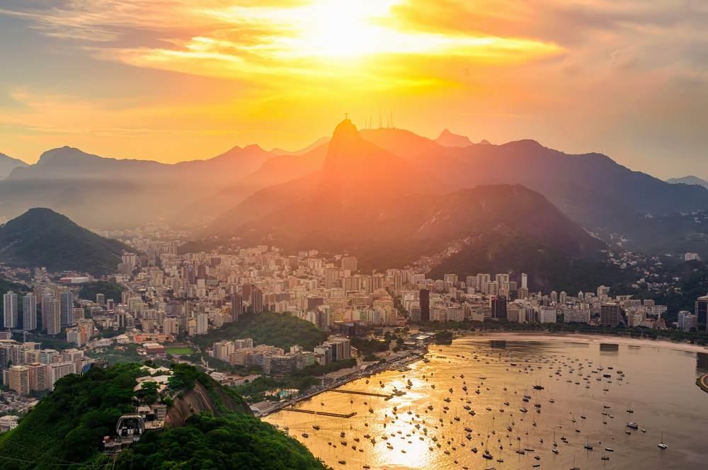 Apus in Rio de Janeiro, Brazilia