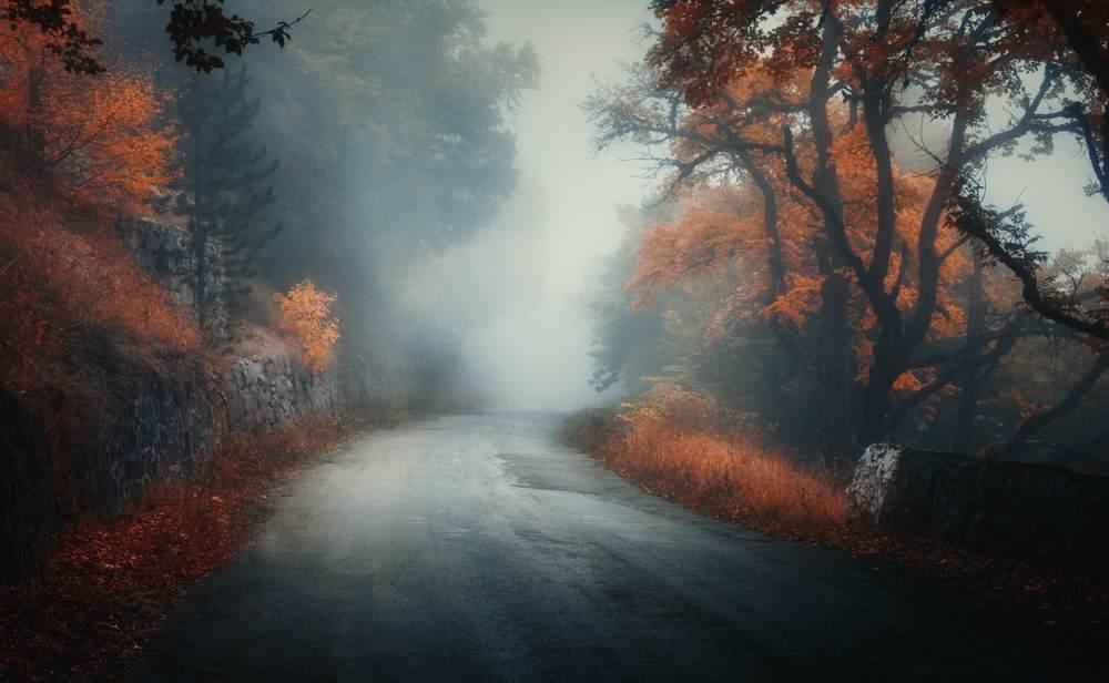 Padurea isi ascunde misterele mai bine toamna
