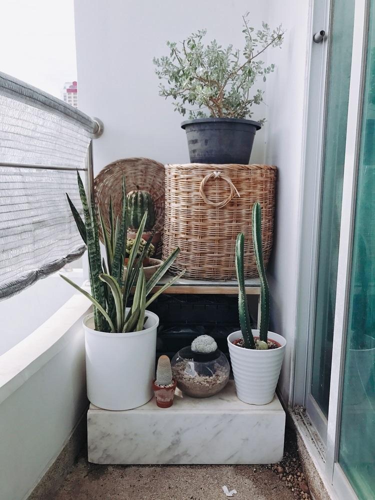 Coltul de gradina de pe balcon