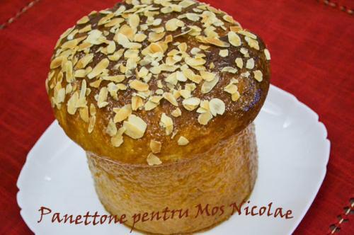 Cozonac italian - Panettone